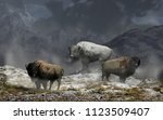 The White Bison King And His...