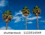 may 25  2018 oak view ... | Shutterstock . vector #1123514549