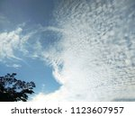 white clouds and tree on blue...   Shutterstock . vector #1123607957