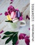 macarons multicolored... | Shutterstock . vector #1123693031