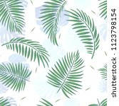 vector illustration of tropical ... | Shutterstock .eps vector #1123798154