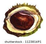 Half Open Chestnut