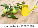 Two green apples with leaves and yellow watering-can on wooden - stock photo