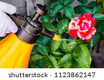 use of pesticides against pests ... | Shutterstock . vector #1123862147
