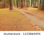 driving through the campground  ... | Shutterstock . vector #1123864454