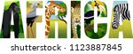 vector africa illustration with ... | Shutterstock .eps vector #1123887845