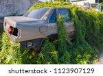 car wreck and evening light | Shutterstock . vector #1123907129