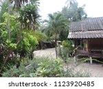 koh phangan  thailand   08 08...   Shutterstock . vector #1123920485