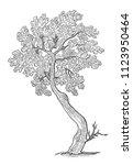 sketch of a decorative small... | Shutterstock . vector #1123950464