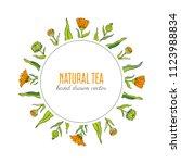 calendula flower wreath... | Shutterstock .eps vector #1123988834