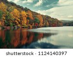 Autumn Colorful Foliage With...