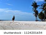 horse walk on the beach... | Shutterstock . vector #1124201654