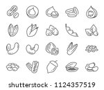 nuts  seeds and beans icon set. ... | Shutterstock .eps vector #1124357519