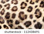 Real Live Leopard Fur Skin...
