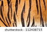 Real Tiger Fur Texture Striped...