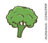 broccoli hand drawn...   Shutterstock .eps vector #1124615909