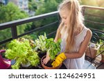 cute little girl planting and... | Shutterstock . vector #1124624951