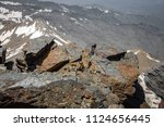 mountain goat laid down resting ... | Shutterstock . vector #1124656445