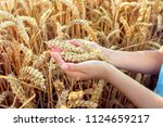 child holding crop in his hand... | Shutterstock . vector #1124659217