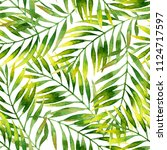 simple watercolor palm leaves... | Shutterstock . vector #1124717597