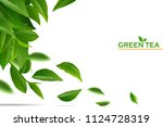 green tea leaves manu and... | Shutterstock .eps vector #1124728319