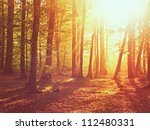 sunrise in autumn forest | Shutterstock . vector #112480331