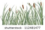 Reed And Green Grass Backgroun...