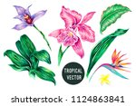 tropical flowers  jungle leaves ... | Shutterstock .eps vector #1124863841