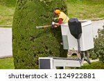 equiped worker pruning a tree... | Shutterstock . vector #1124922881