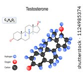 testosterone is the primary...   Shutterstock .eps vector #1124985374