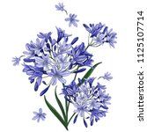 a bouquet of blue flowers on a ... | Shutterstock .eps vector #1125107714