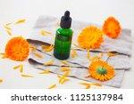 marigold or calendula essential ... | Shutterstock . vector #1125137984