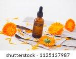 marigold or calendula essential ... | Shutterstock . vector #1125137987