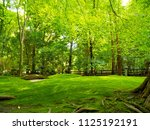 the sun that plugs into the...   Shutterstock . vector #1125192191