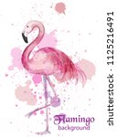 vintage flamingo watercolor... | Shutterstock .eps vector #1125216491