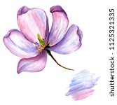 wildflower magnolia flower in a ... | Shutterstock . vector #1125321335