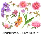 watercolor flowers  purple... | Shutterstock . vector #1125380519