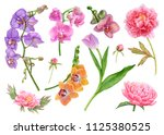 watercolor flowers  purple... | Shutterstock . vector #1125380525