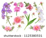 watercolor flowers  pink... | Shutterstock . vector #1125380531