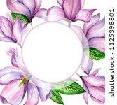 wildflower magnolia flower... | Shutterstock . vector #1125398801