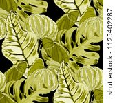 seamless pattern with tropical...   Shutterstock .eps vector #1125402287