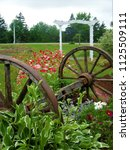 Two Old Wooden Wagon Wheels In...