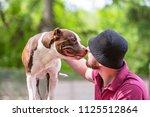 pet owner receiving a kiss lick ... | Shutterstock . vector #1125512864
