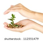 woman's hands are holding a... | Shutterstock . vector #112551479