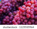 fresh red grape fruit in the...   Shutterstock . vector #1125535964