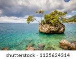 punta rata beach in brela ...   Shutterstock . vector #1125624314
