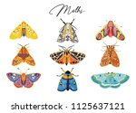 decorative moth collection.... | Shutterstock .eps vector #1125637121