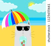 cat in sunglasses with cocktail ... | Shutterstock .eps vector #1125655661