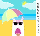 cat in sunglasses with ice... | Shutterstock .eps vector #1125655937