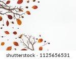 autumn composition. frame made... | Shutterstock . vector #1125656531